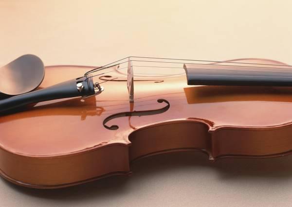 バイオリン楽器